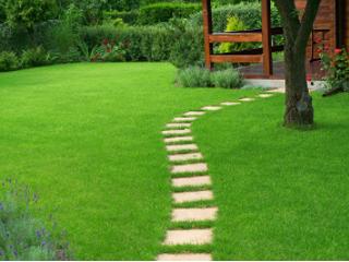 Bezpieczny trawnik