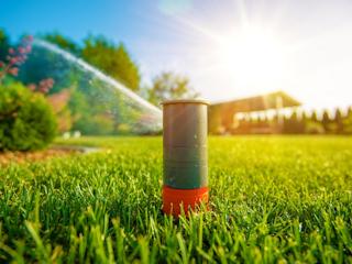 Chcesz mieć piękny ogród? Zainwestuj w systemy nawadniania