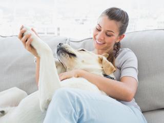 Pies w naszym domu – jak utrzymać porządek i higienę?