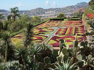 Podróż na Maderę.