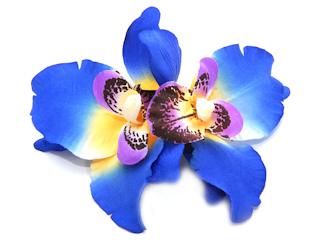 Nowa kolekcja kwiatowej biżuterii marki diva
