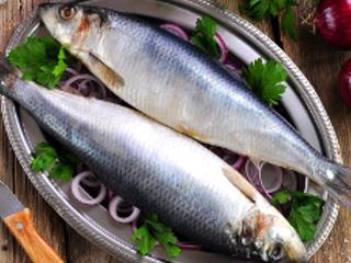 Śledź – najbardziej niedoceniana ryba